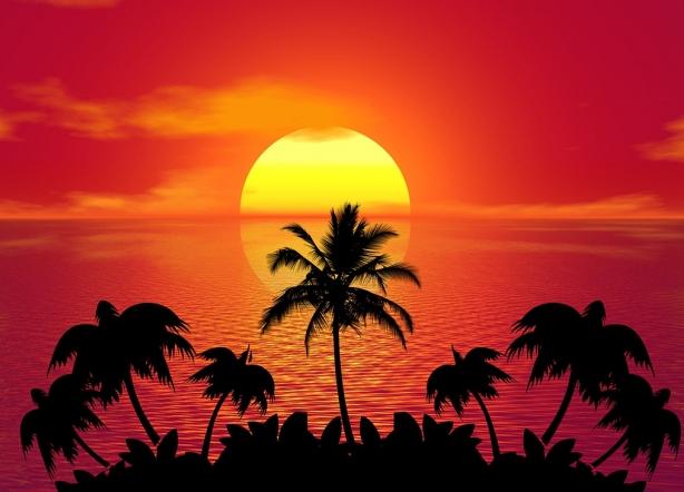 tropical-1651426_1280